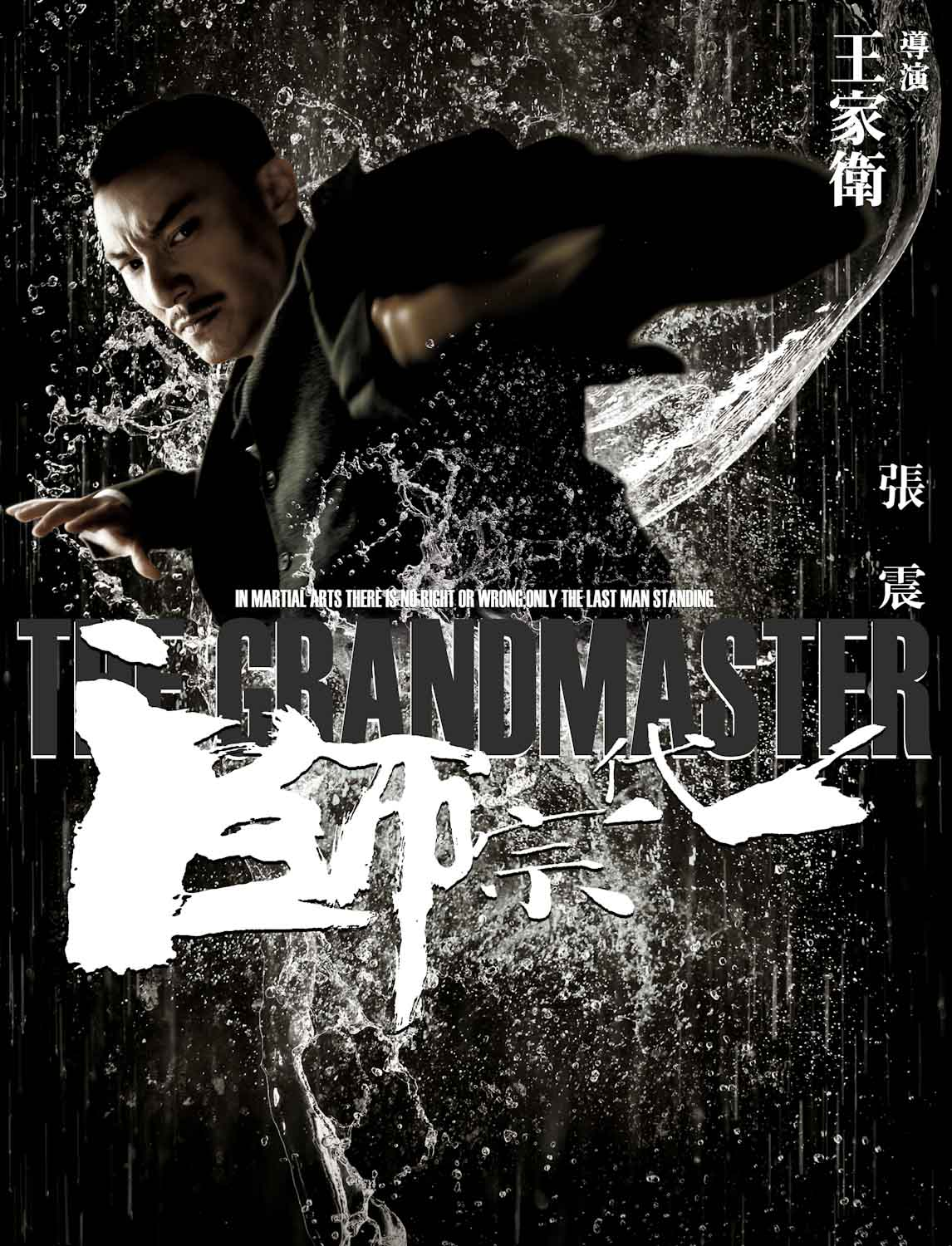 Hot Trailer: 'The Grandmaster' Showcases Mind-Blowing Action