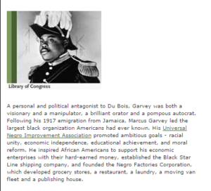 Marcus Garvey highlighted on PBS website- screenshot at http://www.pbs.org/wgbh/amex/wilson/portrait/wp_african.html