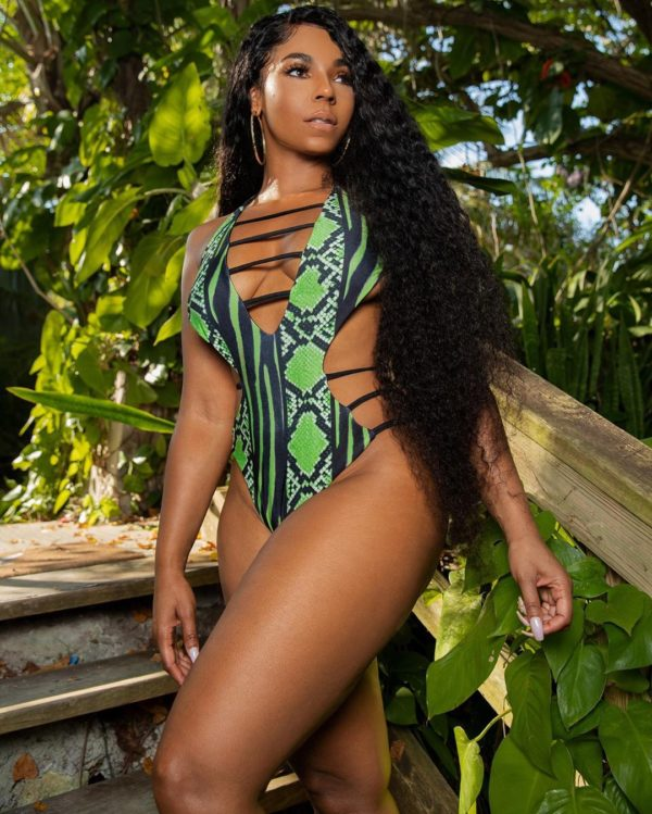 Well Zamnnnnn!!!': Ashanti Effectively Shuts Down the 'Gram with New  Swimsuit Pic